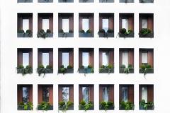 12. Windows - Romina Miletikj